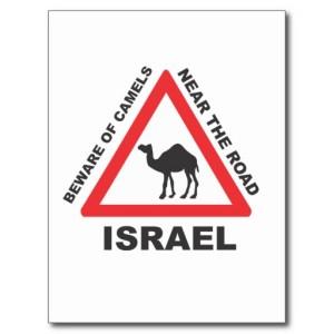 camel_sign