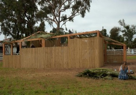 Sukkot at the Ranch