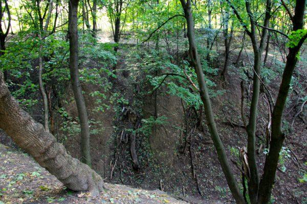 Babi Yar ravine today