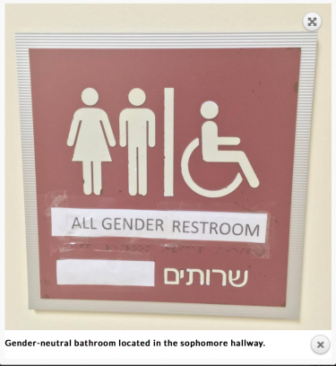"""A new gender-neutral bathroom at the CESJDS Upper School; photo screenshot """"The Lion's Tale."""""""