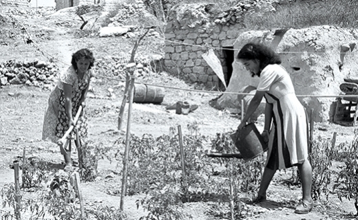 Israel's pioneer settlers came to a desperately poor land devoid of resources, and relied heavily on donations from overseas—plus their own devoted labor—to build a stable and prosperous new nation. Here, new immigrants water a vegetable patch in 1949 in their settlement of Ein-Hod. (Kluger Zoltan)