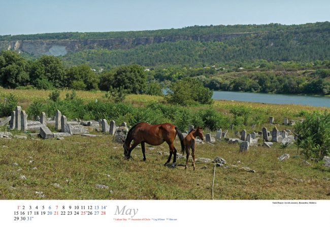 Vadul-Ra?cov Jewish cemetery, Bessarabia; photo by Christian Hermann.