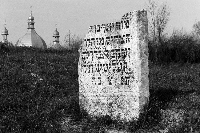 Rohatyn, Jewish cemetery, April 2013; photo by Christian Hermann.